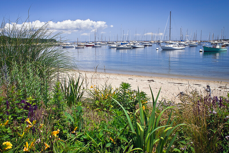 Harbor at Martha's Vineyard - Photo credit: andykazie/iStock