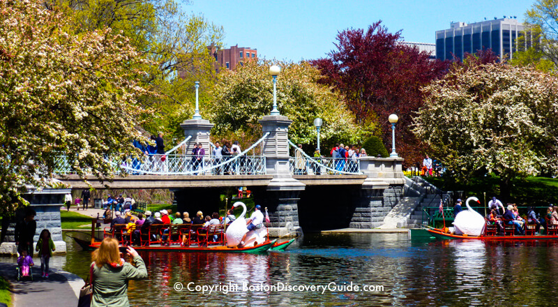 Bostons Public Garden Top Attractions Boston Discovery Guide - 10 things to see and do in boston