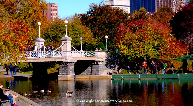 October fall foliage near the lagoon in Boston's Public Garden