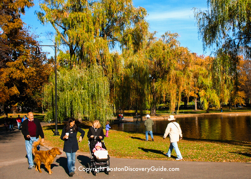Fall foliage colors in the Public Garden in Boston