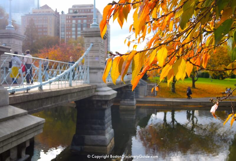 Boston weather in November - Fall foliage in the Public Garden near the bridge over the Lagoon