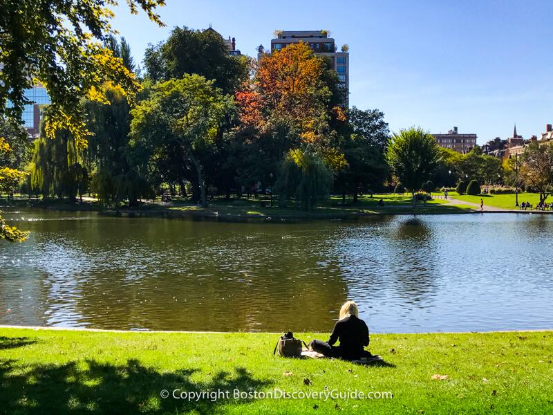 Boston neighborhoods:  Public Garden