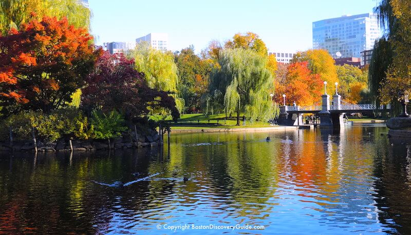 Boston Fall Foliage Tours 7 Best Sites in the City