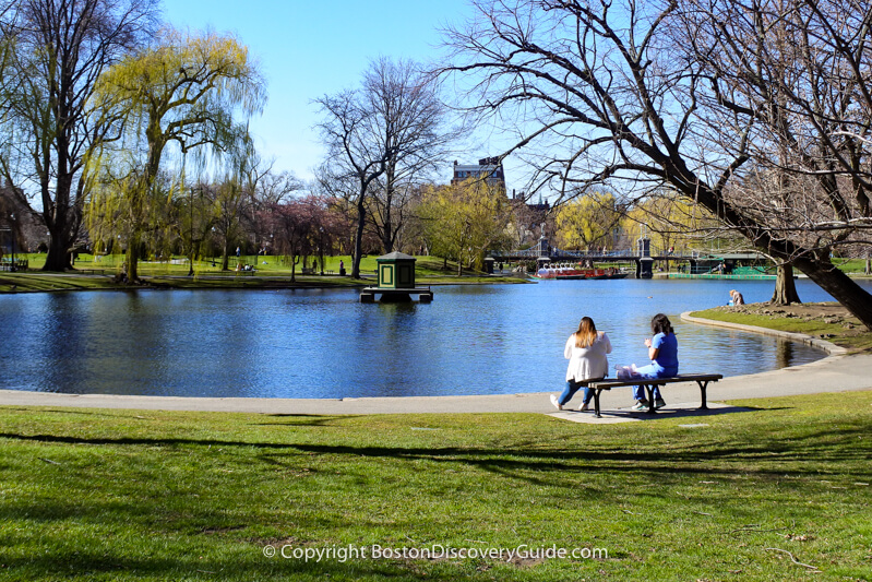 Even in early April when this photo of the Public Garden's Lagoon was taken, some days will be warm enough to soak up some sun