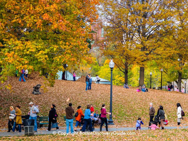 Colorful foliage surrounding the Lagoon in Boston's Public Garden