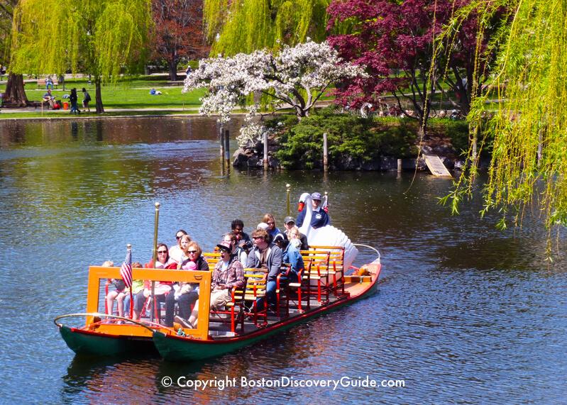 Swanboat in the Public Garden's Lagoon