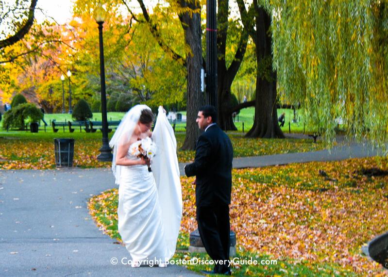 Bride and groom in the Public Garden
