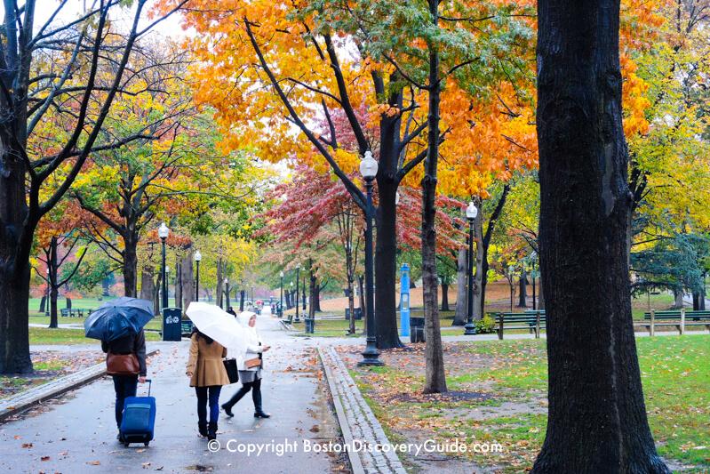 Boston Common on a rainy November afternoon
