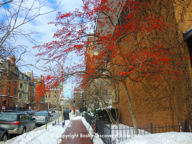 Winter walking tour of Boston: Berkeley Street
