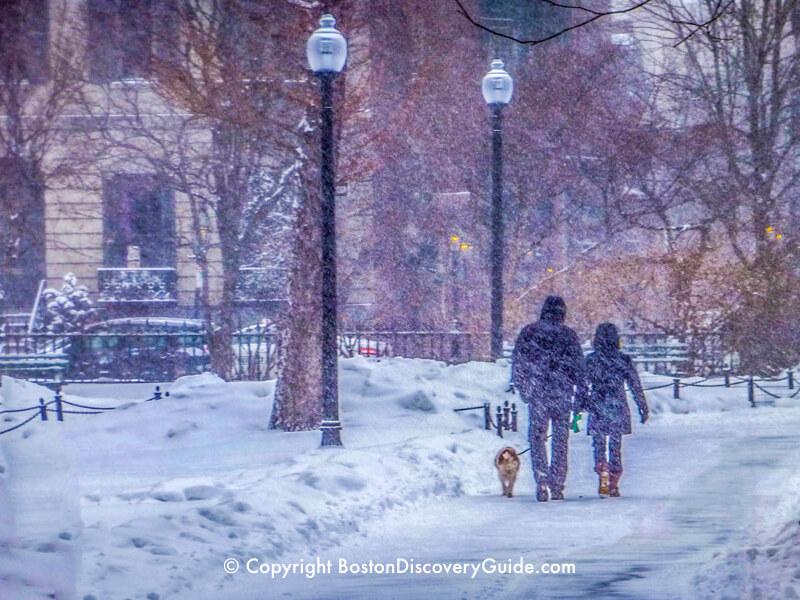 Walking through Boston's Public Garden while heavy snow is falling