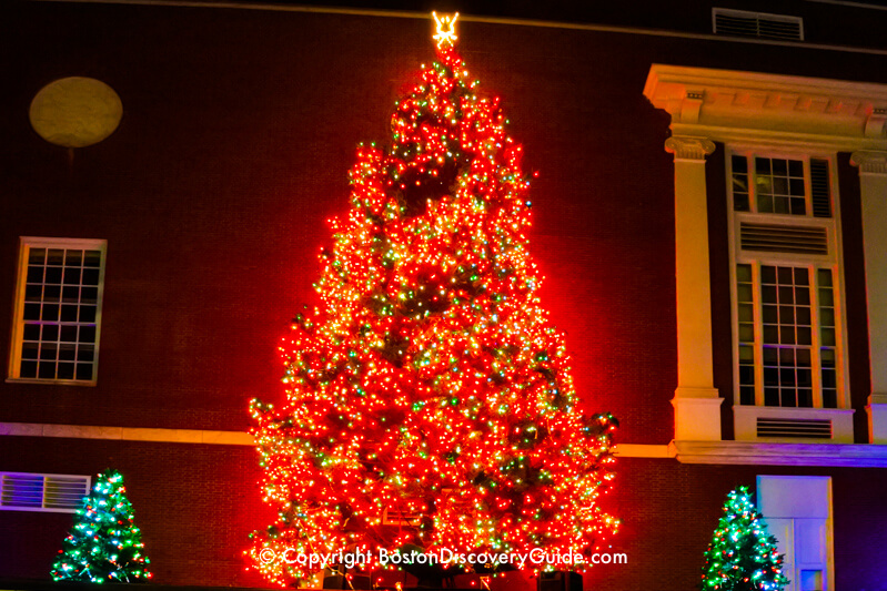 Boston Christmas Tree Lighting Events Schedule 2019 Boston