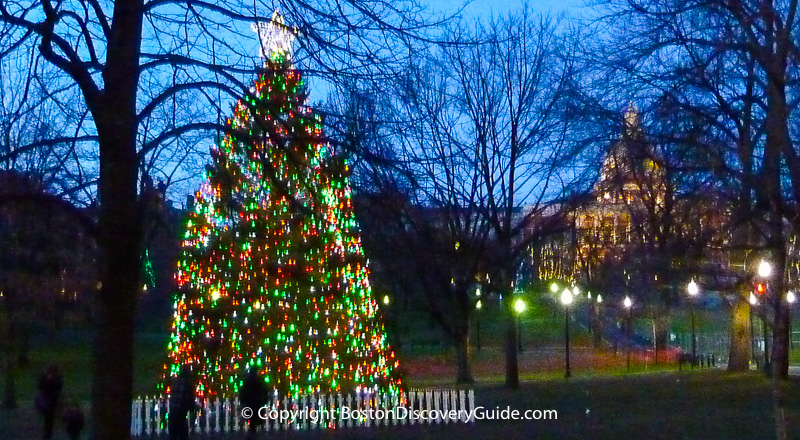 Christmas tree on Boston Common, with Massachusetts State House in the background