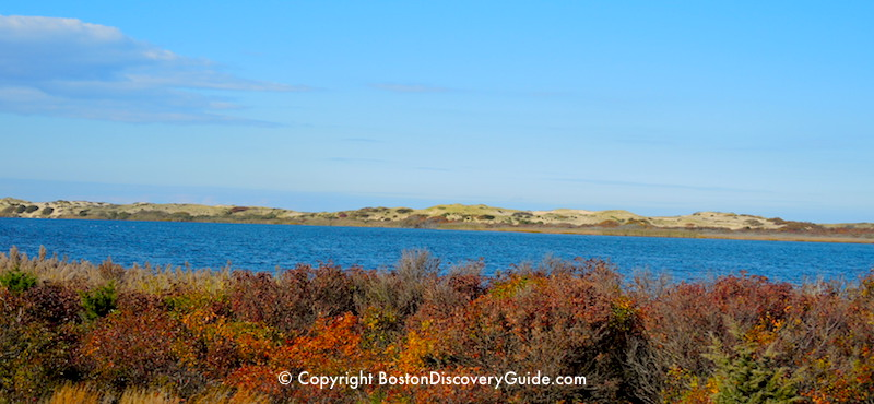 Fall Foliage cruise from Boston