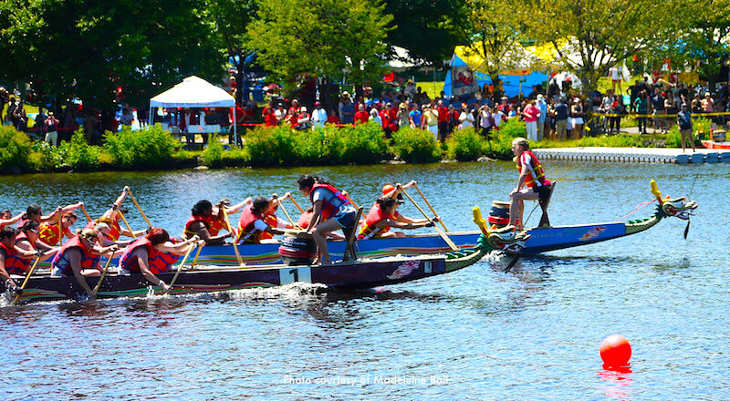 Dragon boats participating in Boston Dragon Boat Festival - photo courtesy of Madeleine Ball
