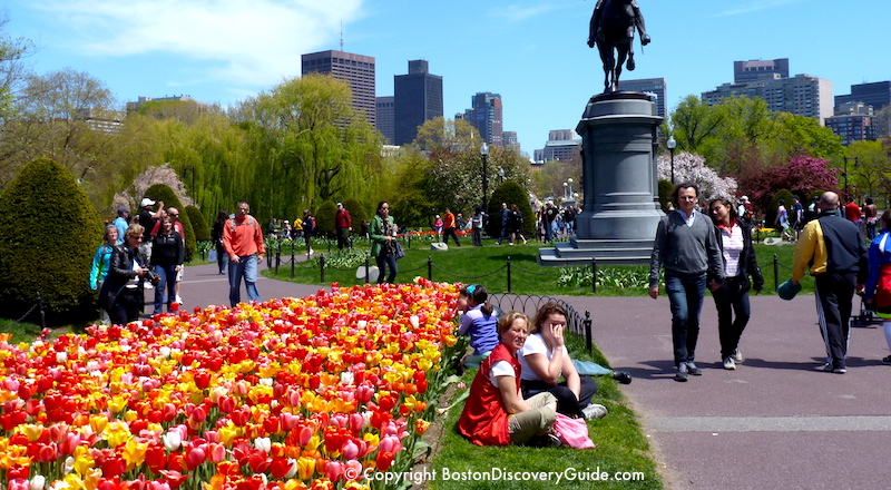 Boston Event Calendar May 2018 | Things to Do | Boston Discovery Guide