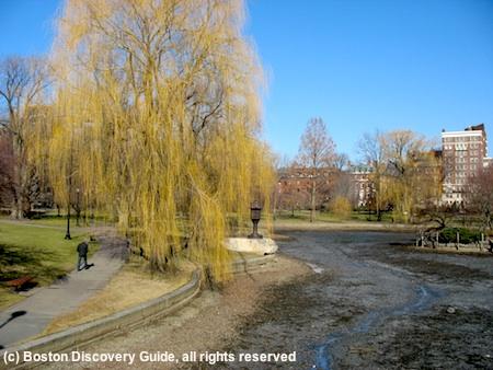 Boston Public Garden in March