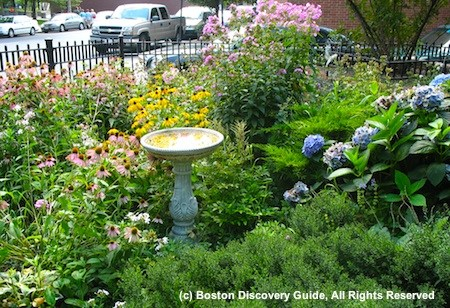 Neighborhood garden in Bay Village, Boston