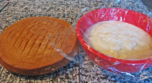 Boston Cream Pie recipe cake and pastry cream from boston-discovery-guide.com
