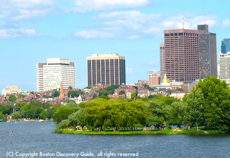 Boston Esplanade trees, with Beacon Hill in the background
