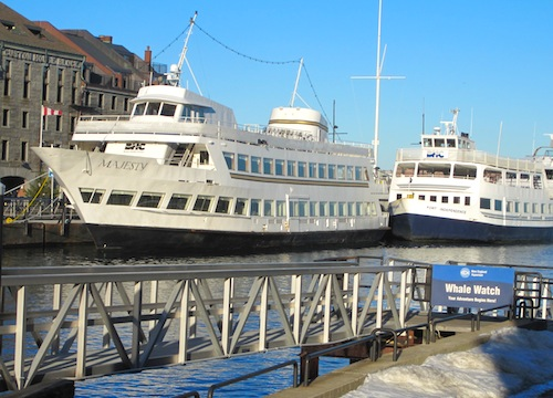 Downtown Waterfront - Boats next to New England Aquarium