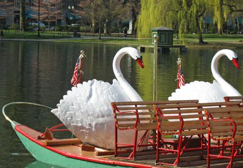 Photo of Boston Swan Boats in Public Garden - taken in April