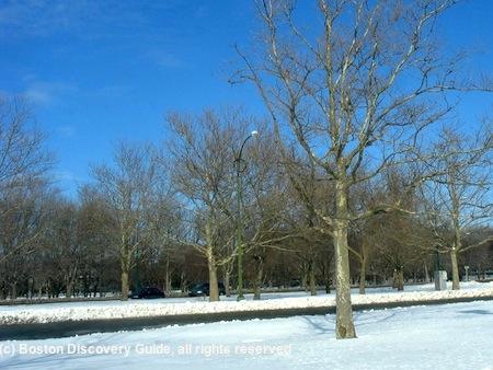 Boston snow in March