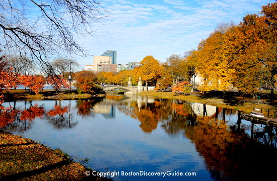 Boston fall foliage on the Esplanade