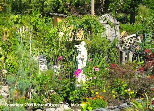 Victory Garden in Boston's Back Bay Fens in the Fenway neighhborhood