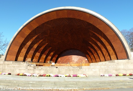 Hatch Shell's beautiful inlaid wood interior