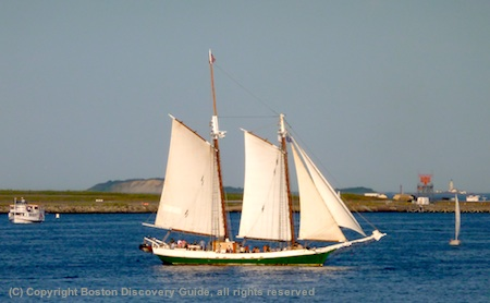 Photo of Liberty Clipper and Boston Light