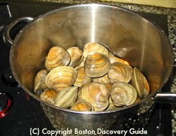 Steam clams in large pot / New England Clam Chowder Recipe - www.boston-discovery-guide.com
