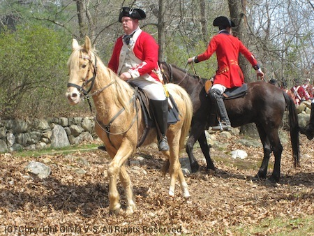 Reenactors playing British troops returning to Boston after their unsuccessful trip to Concord, unaware that they are about to be ambushed