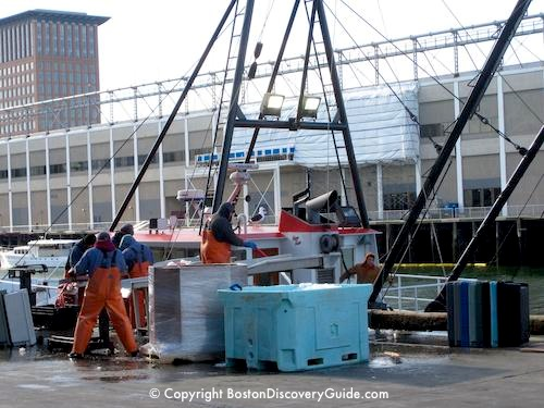 Fishing boat unloading at Fish Pier, South Boston Waterfront