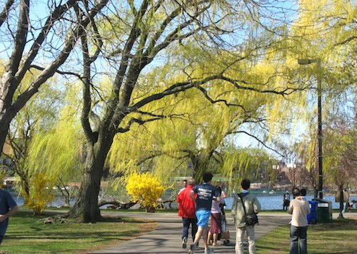 Boston Esplanade in early spring - www.boston-discovery-guide.com