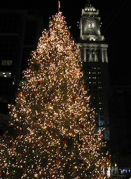 Christmas tree in Quincy Market in Boston / Things to do in Boston in December - www.boston-discovery-guide.com