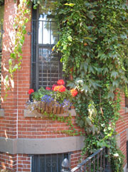 Flowers outside Restored Victorian - Boston's South End