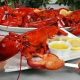 Photo of lobster with drawn butter and lemon