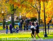 Best Boston November Activities