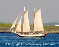 Boston Harbor and River cruises