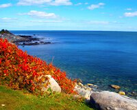 New England Fall Foliage Cruises