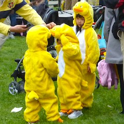 Duckling Day Parade in Boston, MA