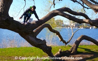 Kids activities on Boston Esplanade