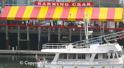 Barking Crab on the South Boston Waterfront