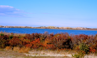 Autumn from Old Cape Cod tour from Boston