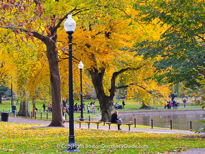 Boston attraction: Fall foliage