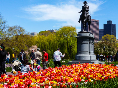 Boston attractions: The Public Garden