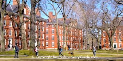 Dorms on the Harvard campus in Cambridge