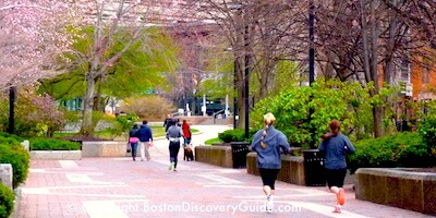 Boston Sightseeing Map Boston Discovery Guide