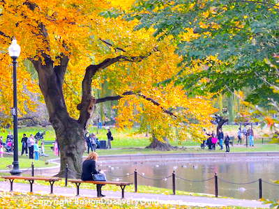 Things to Do in Boston in October