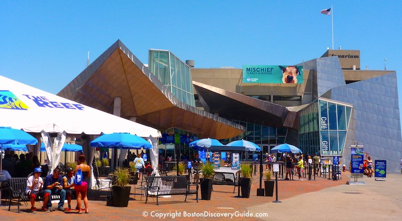 New England Aquarium - Top Boston attraction